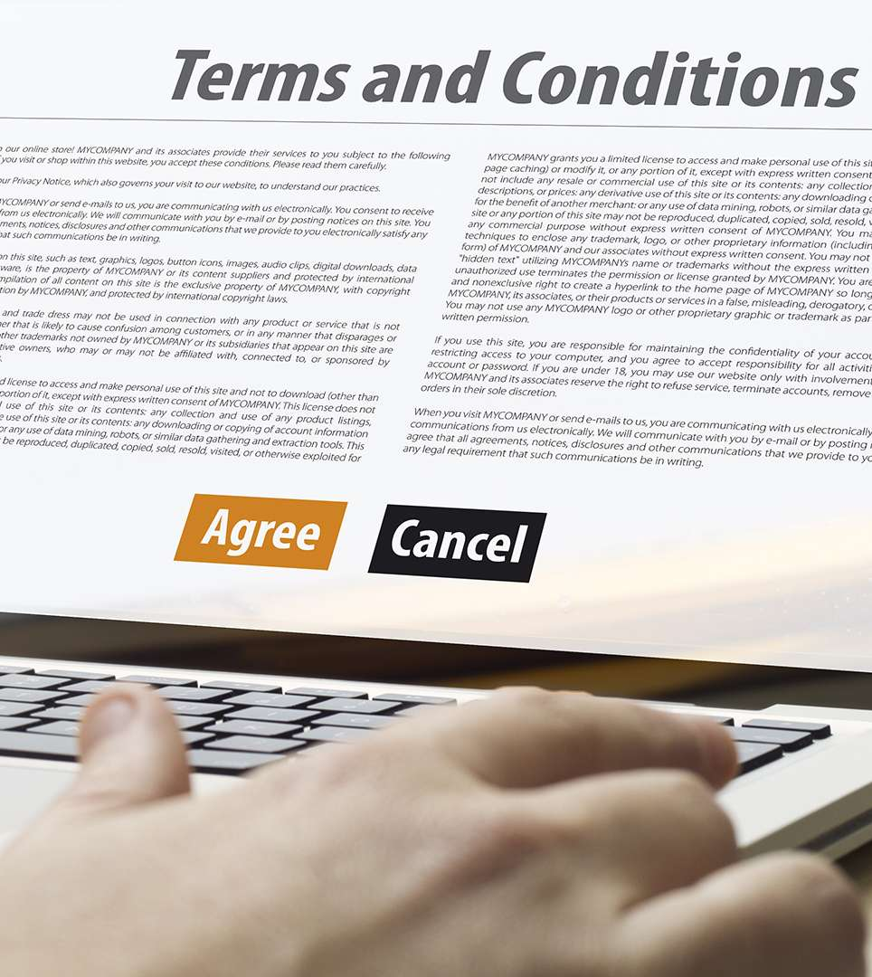 TERMS AND CONDITIONS FOR THE BLUEBIRD INN CAMBRIA WEBSITE