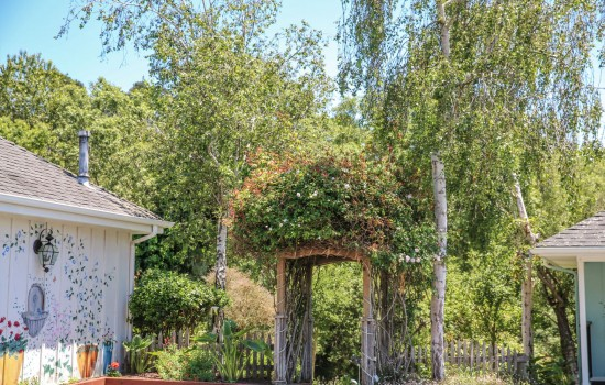 Grounds and Gardens - Archway to Creek Side Gardens